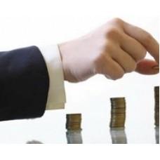 Как правильно составить уставной капитал ИП