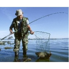 Министерство сельского хозяйства планируется ввести пошлину для рыболовов с именным разрешением