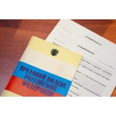 Трудовой договор ИП с работником особненности