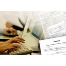 Федеральные органы налоговых инстанций разрабатывают новые типы выписок