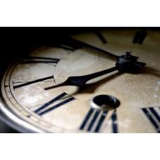 На 2015 год установят новые сроки по сдаче отчетов в Пенсионный фонд и ФСС