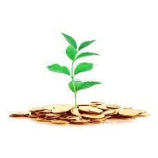 Уставный капитал индивидуального предпринимателя - есть ли необходимость?