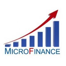 Малый бизнес чаще стал использовать услуги микрофинансистов в связи с кризисом