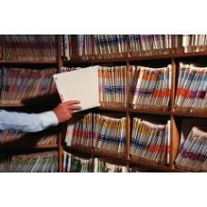 Единый реестр зарегистрированных индивидуальных предпринимателей: хранение информации