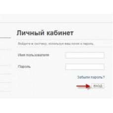 Сайт ФНС планирует в 2015-м году запуск личного кабинета ИП