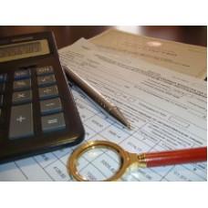 Анализ деятельности индивидуального предпринимателя