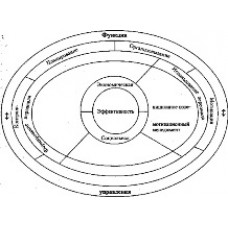 Органы управления индивидуального предпринимателя: в чем секрет?