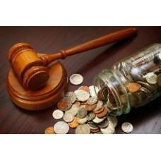 Взыскание задолженности с индивидуального предпринимателя в судебном порядке