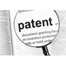 Депутаты хотят скорректировать основания для неудовлетворения заявки на выдачу патента на налогообложение