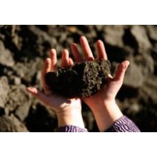 Что постигнет владельца земли, предназначенной для сельского хозяйства, если использовать ее не по назначению?