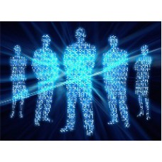 Где содержится информация об индивидуальных предпринимателях