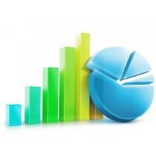 Анализ финансового состояния индивидуального предпринимателя: методы и цели