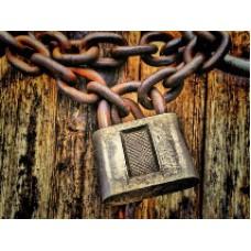 Арест имущества индивидуального предпринимателя, его причины и условия