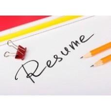 Обязанности индивидуального предпринимателя для резюме - информация которую стоит знать