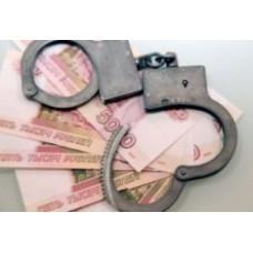 Порядок действий налоговых органов по полученной информации о составе преступления в налоговой сфере