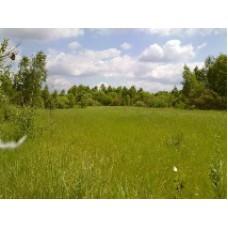 Изменения в декларировании земельных участков в лестных зонах
