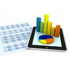 Финансовый анализ индивидуального предпринимателя как средство оценки основных проблем деятельности