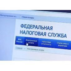 Президент утвердил передачу полномочий по отсрочке и рассрочки в введение ФНС РФ